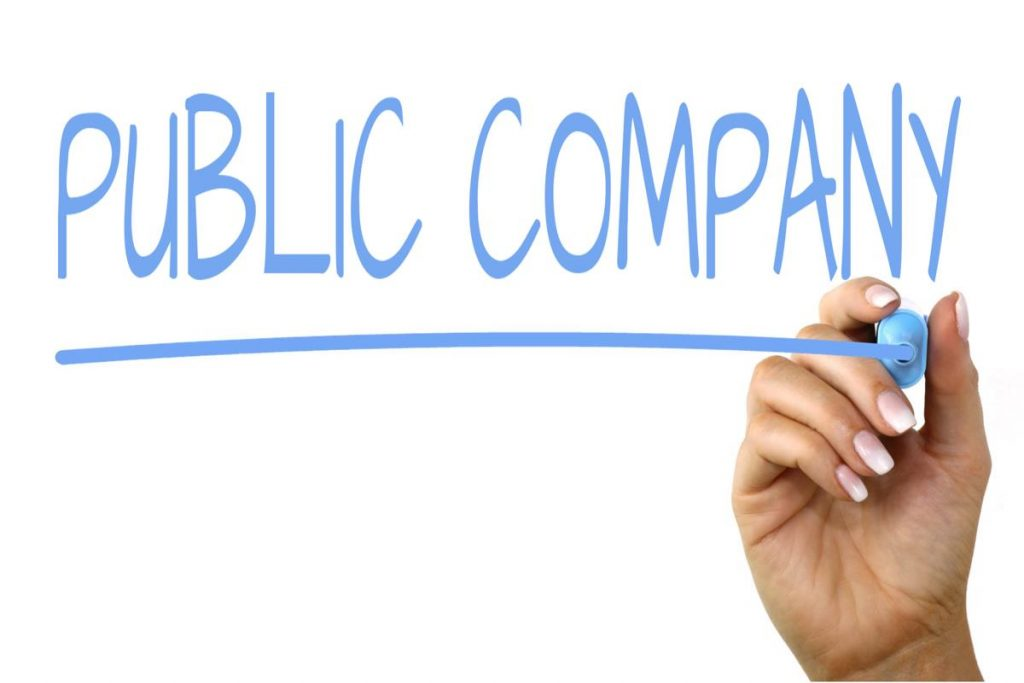 Public Company, Stock, Buying Stocks, Selling Stocks, Finance, Profit
