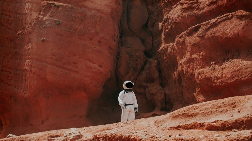 Astronaut, Mars, SpaceX Stock, Investment, Profit